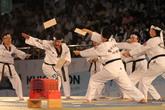 International Taekwondo Hanmadang