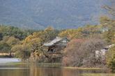 Wiryangmot(Yangyangji)