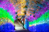 Cheongdo Provence