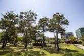 Daejeon Hoedeok Dongchundang Park