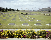 UN Memorial Cemetery 