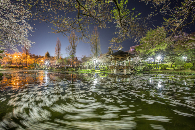 Spring Night at Bomunjeong Pavilion