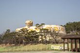 Hampyeong Herptile Eco Park