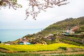 Gacheon Daraengi Village