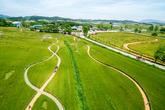 Gochang Green Barley Field Festival