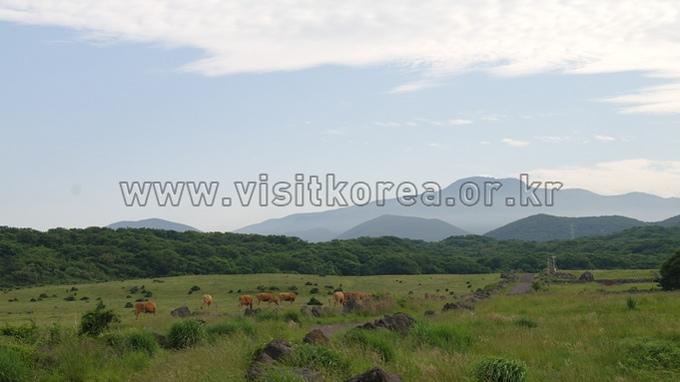 Jeju Stone Culture Park