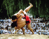 Korean Wrestli..