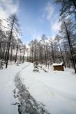 국립횡성숲체원