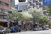 Mapo Dwaejigalbi Street