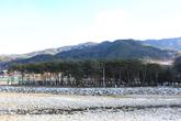 Jangpung Forest