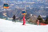 Yongpyong Ski Resort(Yongpyong Resort)