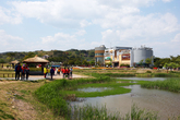 Suncheonman Bay Ecological Park