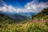 Mt. Jeoksangsan