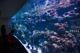 Hanwha Aqua Planet Jeju