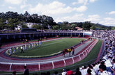 Gwacheon Race ..