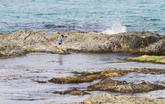 Eodal Beach
