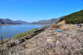 Spring of Nakdonggang River