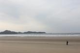 Coastal Dune i..