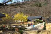 Suncheon Songg..