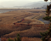 Suncheonman Re..
