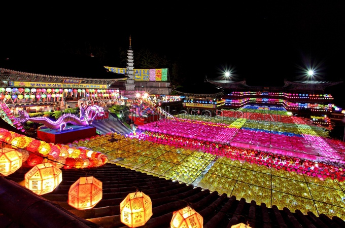 Celebration Lotus Lanterns