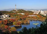 Daegu Metropolitan City