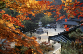 Autumn Scenery of Yongmunsa Temple