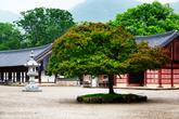 Seonunsa Temple