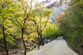 Gangcheonsan County Park