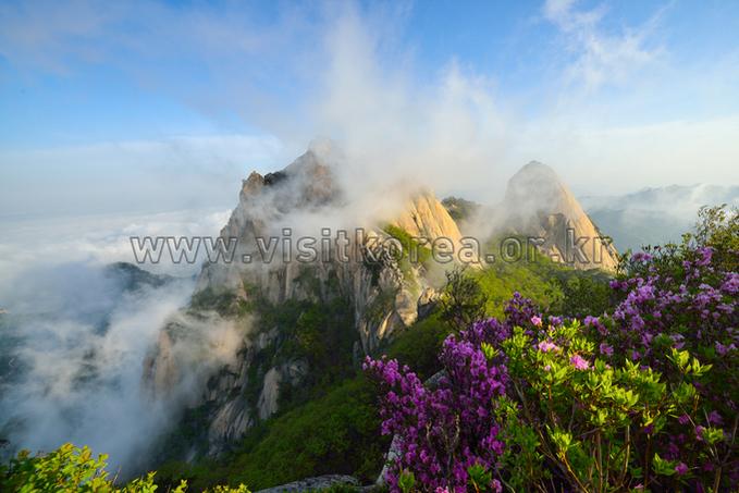 Spring of Bukhansan Mountain