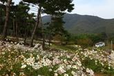 Okjeongho Lake..