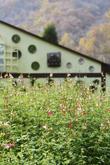 Herbnara Farm