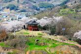 Hadong Park