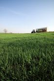 Anseong Farm Land