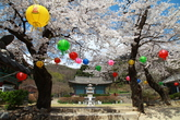 Spring in Sinwonsa Temple