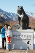Family Experience Tour, Mt. Seoraksan (Winter)