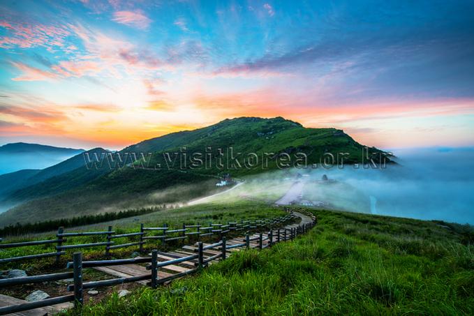 Summer in Ganwoljae Pass