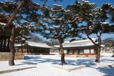 Changgyeonggung Palace in Winter