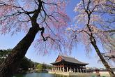 Gyeonghoeru Pa..