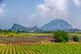 Dansan Mountain (Bagumji Oreum)