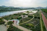 Samcheok Rose Garden