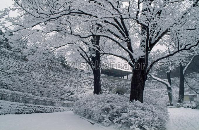 Snowscape of Nammun