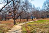 Gyeongju Wolseong Palace Site(Banwolseong Fortress)