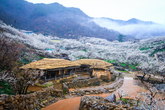 Maehwa Village..