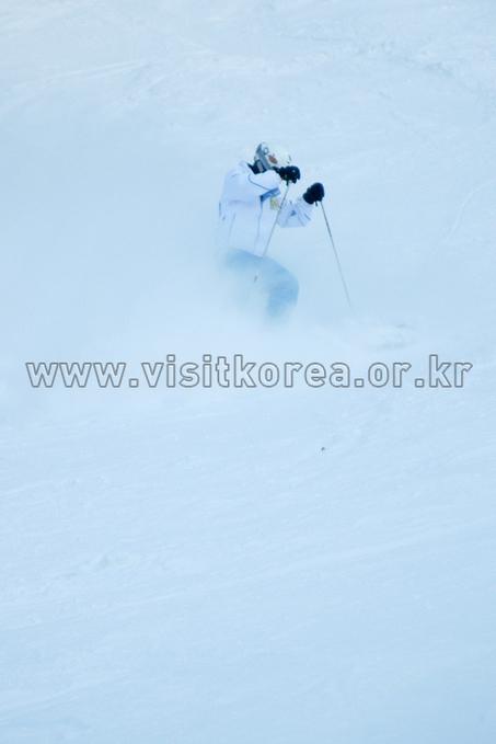 Yongpyeong Resort, Ski
