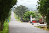 Dokkaebi Road-Mystery Road