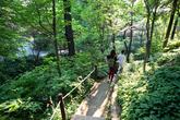 Hantaek Botanical Garden
