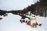 Family Experience Tour, Snow Sledding