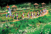 2008 The 5th Gyeonggi-do Tourism Photo Collection