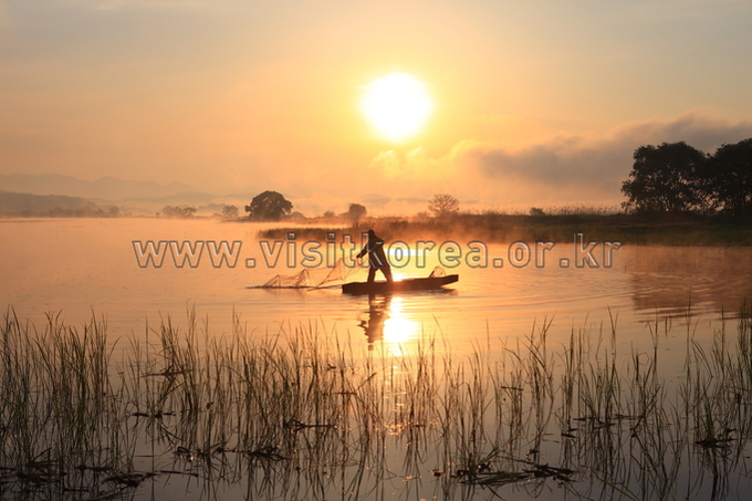 Fisherman in Upo Wetland